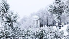 Sörja filialer med visare som täckas av frost och gazeboen Arkivbilder