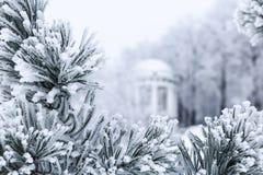 Sörja filialer med visare som täckas av frost och gazeboen Royaltyfri Bild