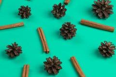 Sörja kottar, kanel och dekoren för nytt år som isoleras på den blåa bakgrunden arkivbild