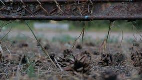 Sörja kottar ligger på jordningen under det gamla staketet stock video