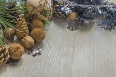 Sörja kottar med valnötter och stearinljuset Royaltyfri Foto