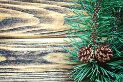 Sörja kottar och granfilialer i lantlig stil på gammal träbakgrund Julbegrepp med kopieringsutrymme för text Fotografering för Bildbyråer