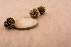 Sörja kottar på ett stycke av klippt trä Arkivfoton