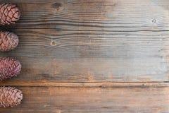 Sörja kottar på gammal träbakgrund med kopieringsutrymme arkivfoto