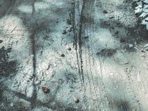 Sörja kotteavverkningen till jordningen från ett sörjaträd Slut som skjutas upp arkivfoton