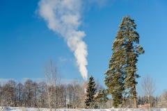 Sörja och röka på frostig dag Royaltyfri Bild