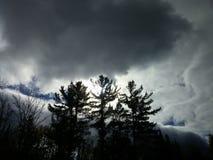 Sörja stormen Fotografering för Bildbyråer