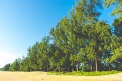 Sörja stranden är på stranden Arkivfoton