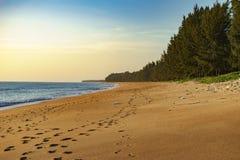 Sörja stranden är på stranden Royaltyfri Foto