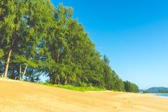 Sörja stranden Arkivbild