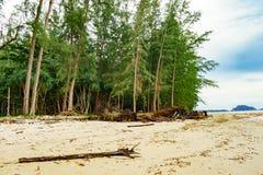 Sörja stranden Royaltyfria Bilder