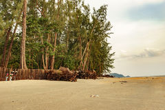 Sörja stranden Royaltyfri Foto