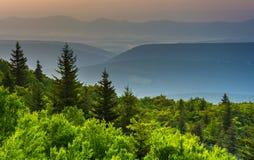 Sörja träd, och avlägsna berg som ses från björn, vaggar sylten, Royaltyfri Bild