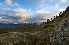 Sörja träd på backen Solnedgång i bergen Härligt f Royaltyfria Bilder