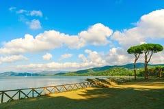 Sörja trädgruppen på strand- och havsfjärdbakgrunden Punta alun, arkivfoto