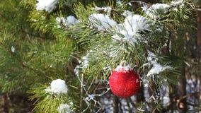 Sörjer den röda leksaken för jul på arkivfilmer