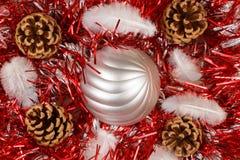 Sörjer kottar, fjäder, och silvrig jul klumpa ihop sig på ett rött glitter Arkivfoton