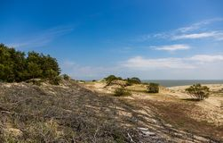Sörjer och sanddyn på den spottade Curonianen, Ryssland royaltyfri foto