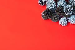 Sörjer röd bakgrund för jul med kottar Arkivbilder