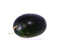 Söt grön vattenmelon royaltyfri foto