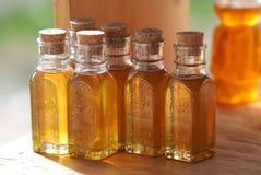 söt honung Royaltyfria Bilder