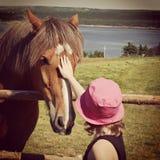 Söt instagram av unga flickan som daltar hästen Fotografering för Bildbyråer
