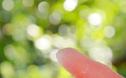Söt ispop med rosa nektar Royaltyfri Fotografi