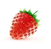 söt jordgubbe Arkivbilder