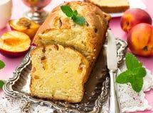 Söt kaka med persikor och keso Royaltyfri Bild