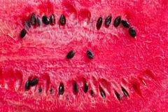 Söt karmosinröd vattenmelon Arkivbilder