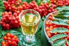 Söt likör som göras från rönnbär Royaltyfria Bilder