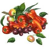 Söt peppar med den röda löken och ett äpple förgrena sig Fotografering för Bildbyråer
