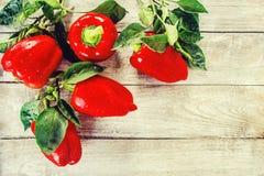 söt pepparred Arkivfoton