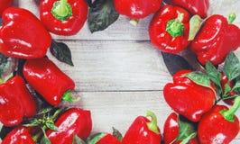 söt pepparred Royaltyfria Bilder