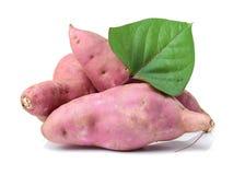 söt potatis royaltyfria foton