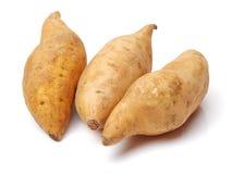 söt potatis royaltyfri foto