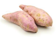 söt potatis Royaltyfria Bilder