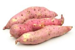 söt potatis Fotografering för Bildbyråer