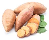 söt potatis bakgrund isolerad white royaltyfria bilder