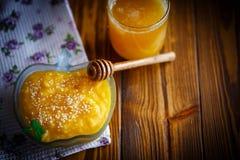 Söt pumpahavregröt med honung- och sesamfrö Arkivfoton