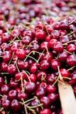 Söt röd körsbärsröd closeupmakro på den utomhus- marknaden royaltyfri foto