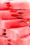 Söt röd melontextur fotografering för bildbyråer