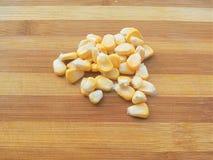 söt sked för kernels för havrehandholding royaltyfri foto