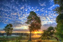 Söt soluppgång Royaltyfri Foto