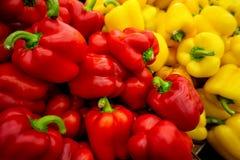 Söt spansk peppar Arkivbilder