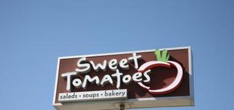Söt tomatrestaurang Arkivfoto