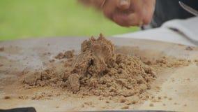 Söt tortilla stock video