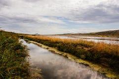 Söt vattenström bredvid en saltdam Arkivbilder