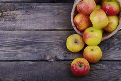 Söta äpplen i påse Arkivfoto