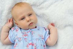 Söta Chubby Newborn Baby Girl Royaltyfri Bild